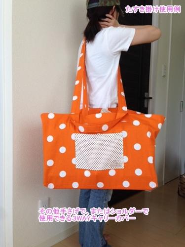 bag3way01