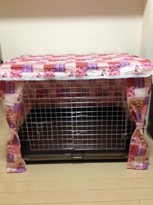 cagecover0101-300