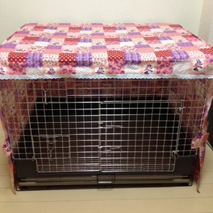 cagecover0103-300